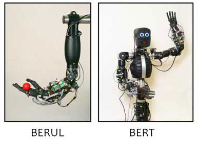 BERUL and BERT robots